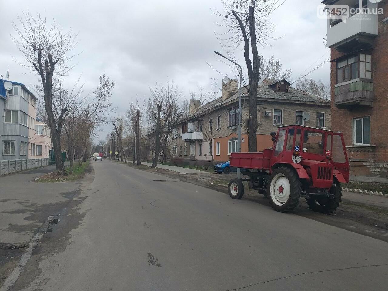 «Зеленая весна» в Северодонецке. Как благоустраивают город после зимы (фото), фото-8