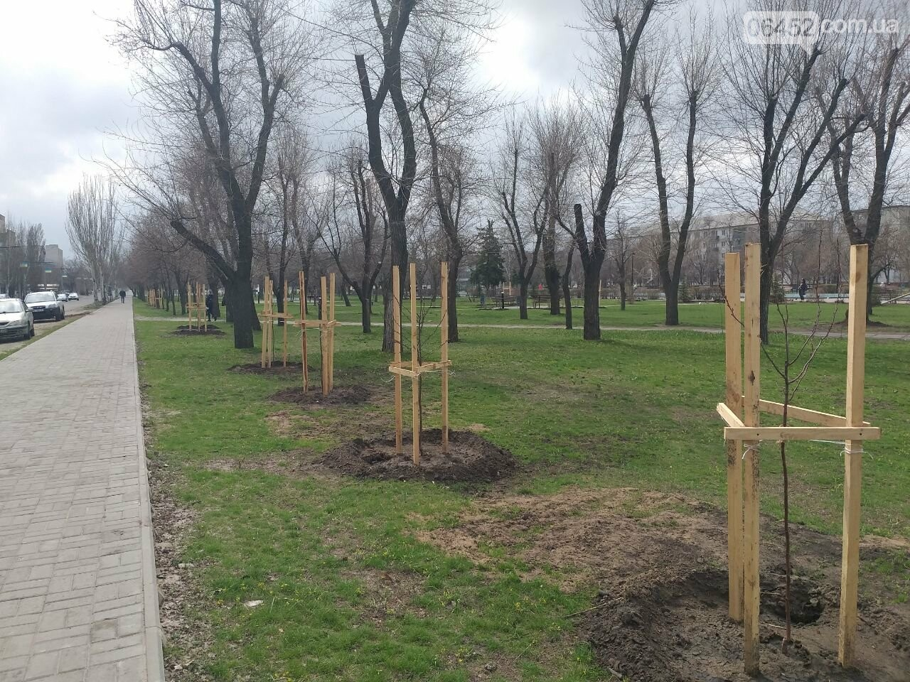 «Зеленая весна» в Северодонецке. Как благоустраивают город после зимы (фото), фото-4