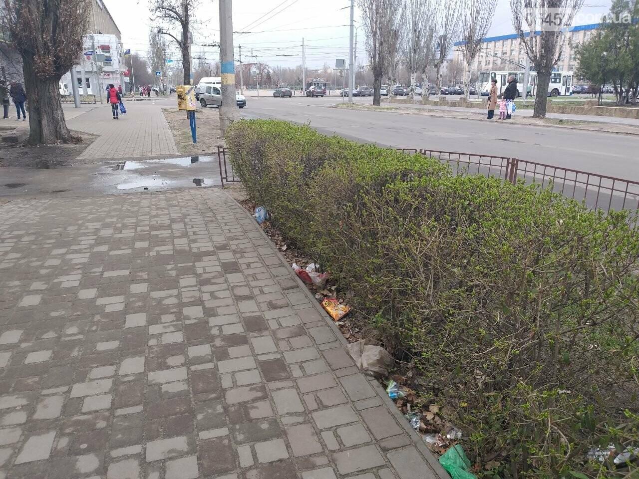 «Зеленая весна» в Северодонецке. Как благоустраивают город после зимы (фото), фото-20
