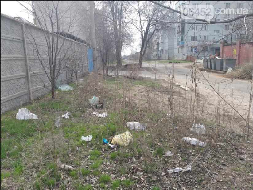 «Зеленая весна» в Северодонецке. Как благоустраивают город после зимы (фото), фото-17