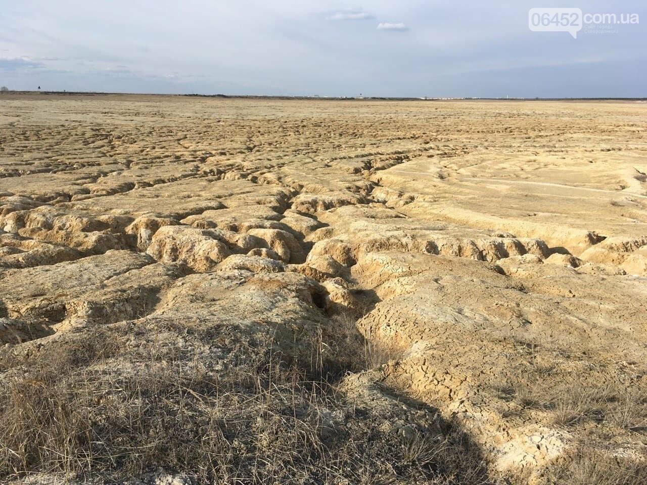 Пустынный оазис: содовый завод на Донбассе способен удивить невероятной природой, фото-3