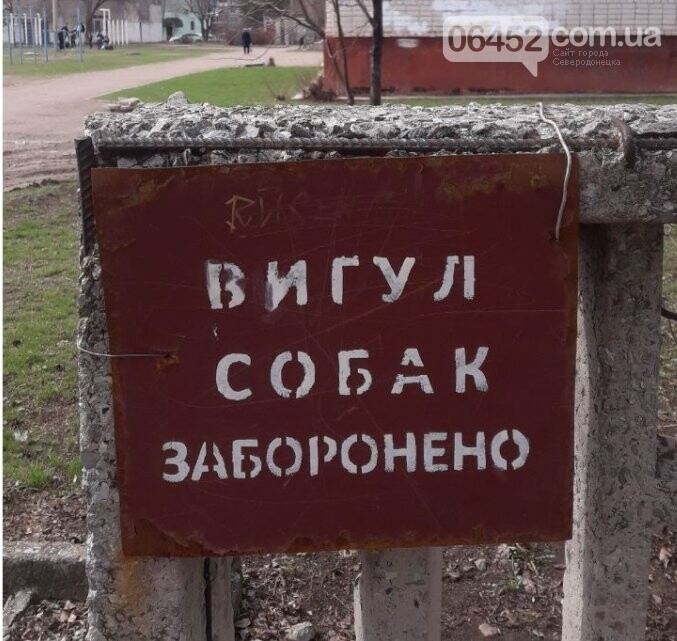 Территория СОШ №14, Северодонецк