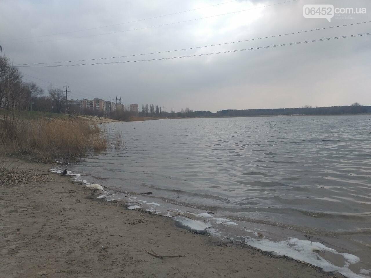 Ловись рыбка...до трех килограмм: где на Луганщине разрешено рыбачить в период нереста , фото-1