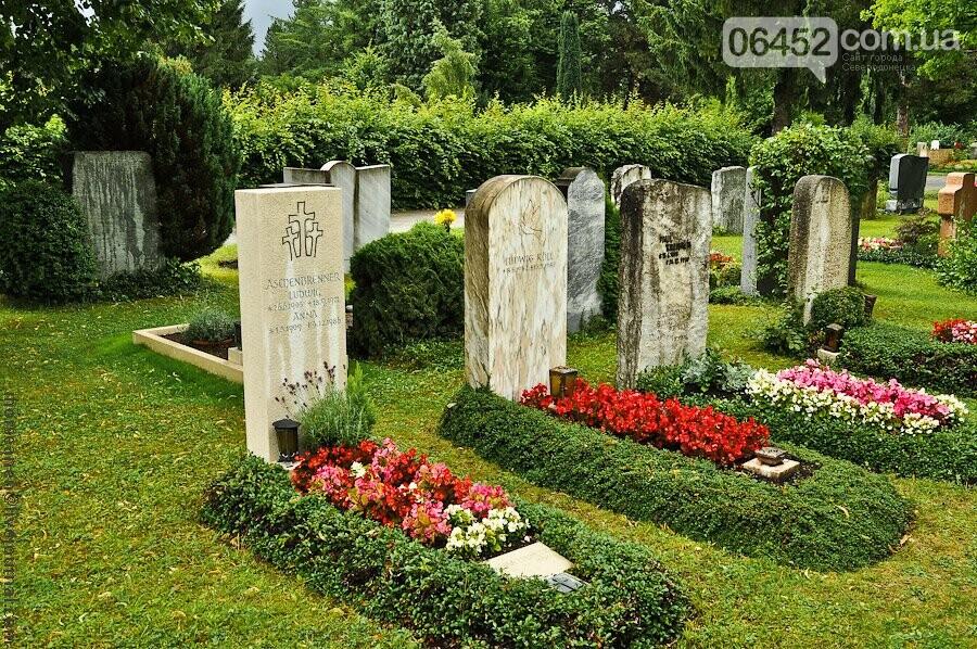 Живым тут не место: почему на кладбища до сих пор приносят искусственные цветы , фото-6