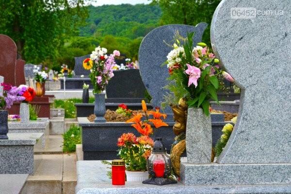Живым тут не место: почему на кладбища до сих пор приносят искусственные цветы , фото-2