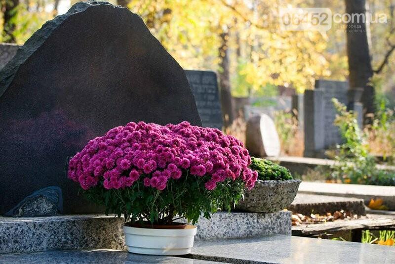Живым тут не место: почему на кладбища до сих пор приносят искусственные цветы , фото-5