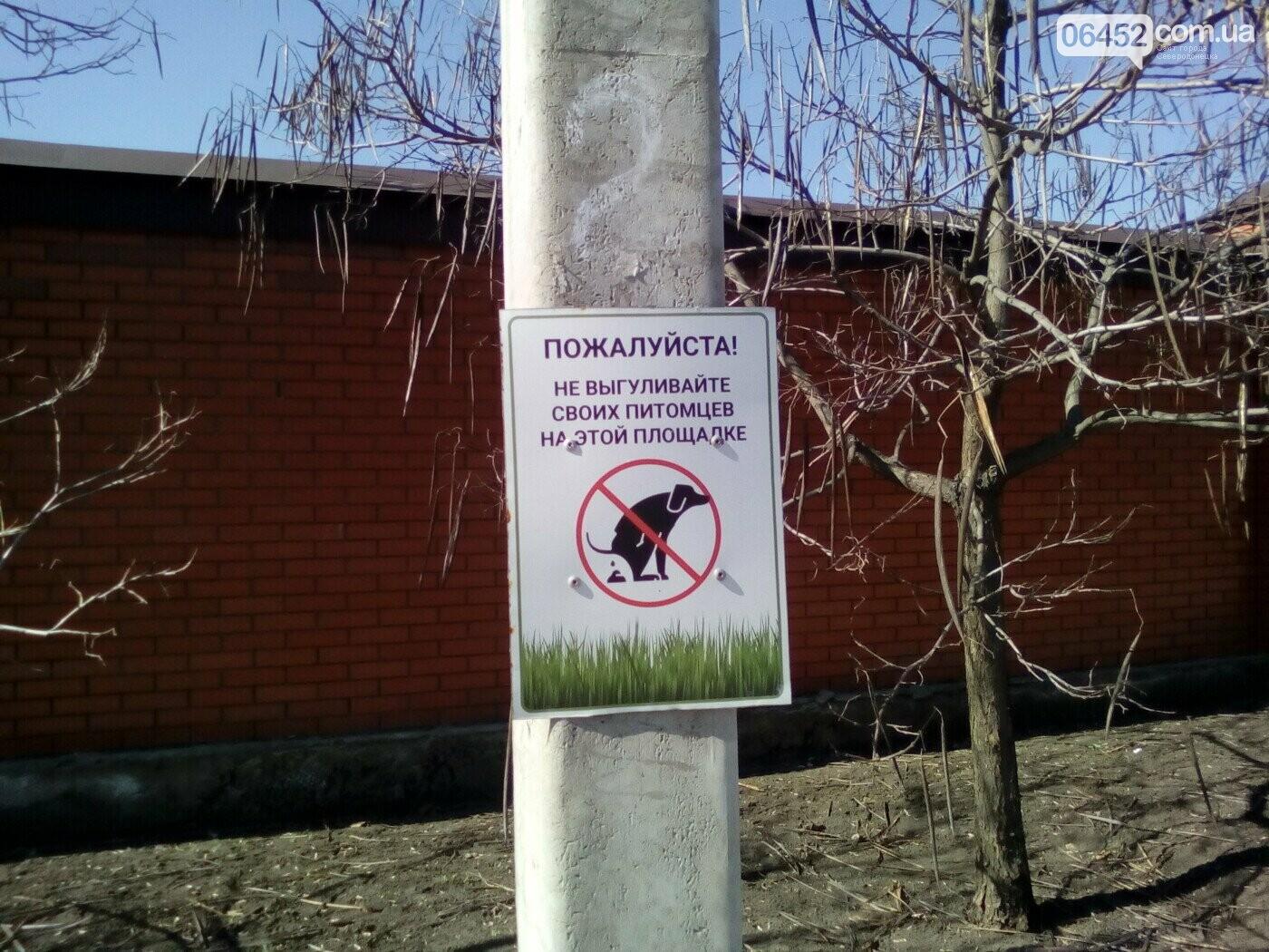 Жить по-европейски: как сделать Северодонецк культурным не тратя денег, фото-4