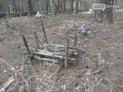 Собаке - собачьи похороны: как в Северодонецке хоронят домашних животных , фото-5