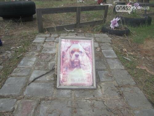 Собаке - собачьи похороны: как в Северодонецке хоронят домашних животных , фото-8