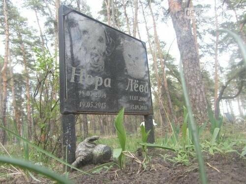 Собаке - собачьи похороны: как в Северодонецке хоронят домашних животных , фото-9