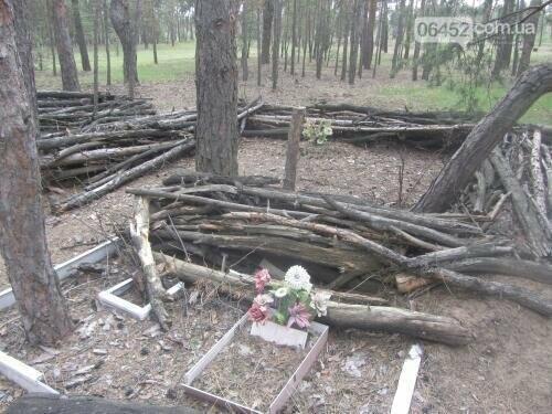 Собаке - собачьи похороны: как в Северодонецке хоронят домашних животных , фото-12