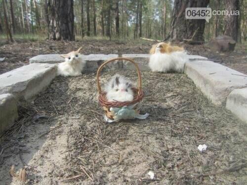Собаке - собачьи похороны: как в Северодонецке хоронят домашних животных , фото-21
