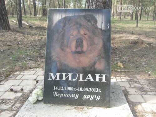 Собаке - собачьи похороны: как в Северодонецке хоронят домашних животных , фото-4