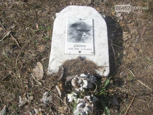 Собаке - собачьи похороны: как в Северодонецке хоронят домашних животных , фото-25