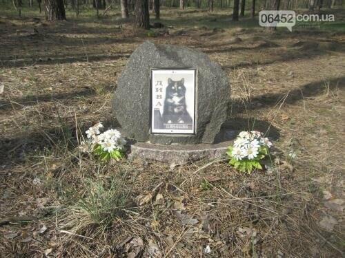 Собаке - собачьи похороны: как в Северодонецке хоронят домашних животных , фото-26