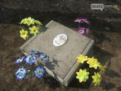 Собаке - собачьи похороны: как в Северодонецке хоронят домашних животных , фото-27