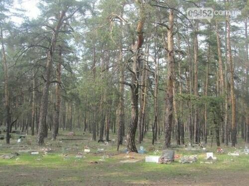 Собаке - собачьи похороны: как в Северодонецке хоронят домашних животных , фото-32