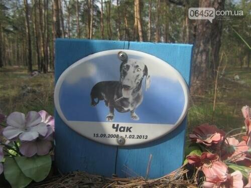 Собаке - собачьи похороны: как в Северодонецке хоронят домашних животных , фото-39