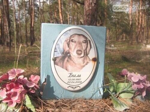 Собаке - собачьи похороны: как в Северодонецке хоронят домашних животных , фото-40