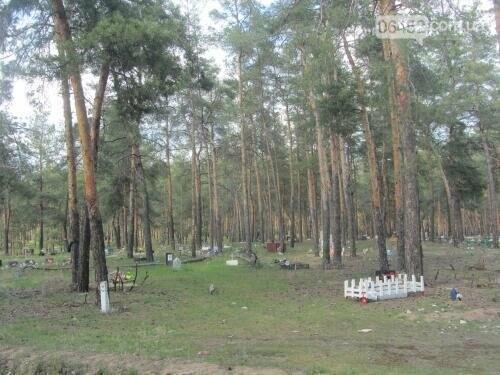 Собаке - собачьи похороны: как в Северодонецке хоронят домашних животных , фото-43