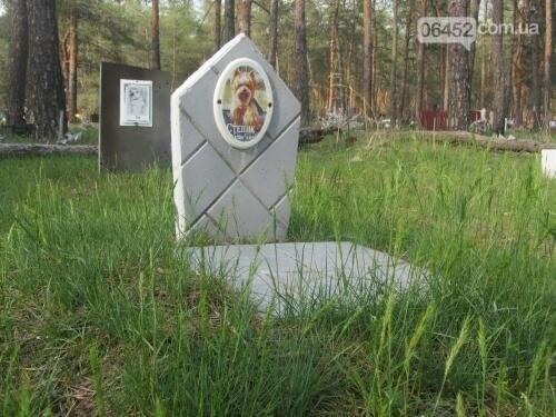 Собаке - собачьи похороны: как в Северодонецке хоронят домашних животных , фото-50