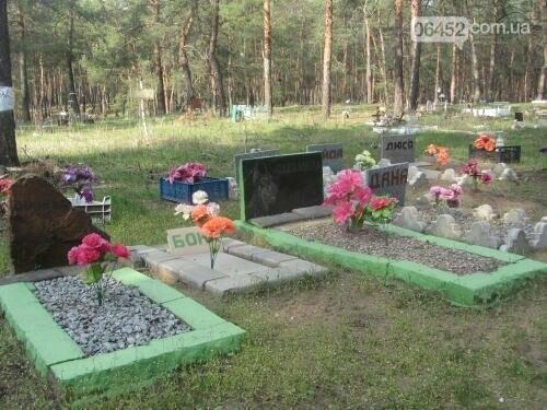 Собаке - собачьи похороны: как в Северодонецке хоронят домашних животных , фото-51
