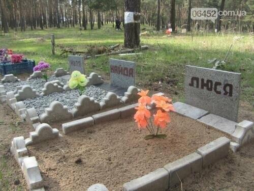 Собаке - собачьи похороны: как в Северодонецке хоронят домашних животных , фото-2