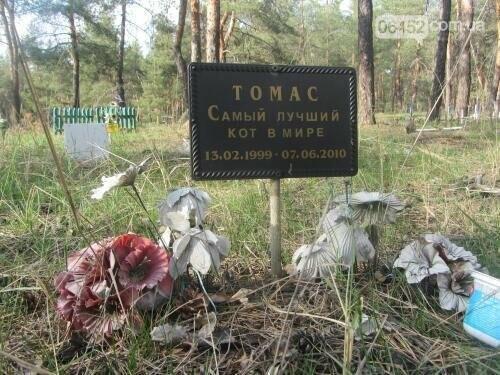 Собаке - собачьи похороны: как в Северодонецке хоронят домашних животных , фото-53