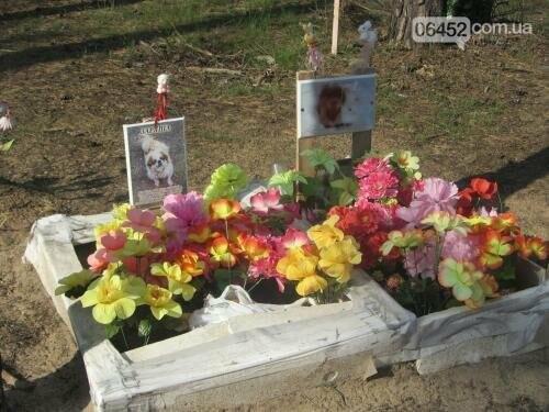 Собаке - собачьи похороны: как в Северодонецке хоронят домашних животных , фото-55
