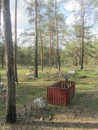 Собаке - собачьи похороны: как в Северодонецке хоронят домашних животных , фото-56