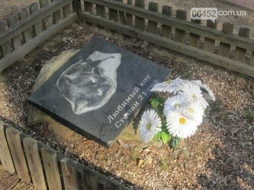 Собаке - собачьи похороны: как в Северодонецке хоронят домашних животных , фото-60