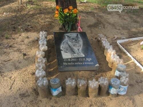 Собаке - собачьи похороны: как в Северодонецке хоронят домашних животных , фото-64