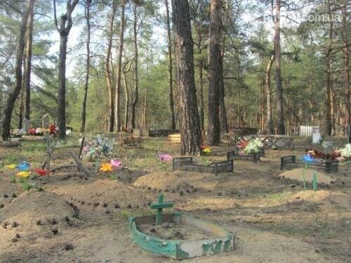 Собаке - собачьи похороны: как в Северодонецке хоронят домашних животных , фото-65