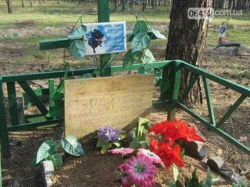 Собаке - собачьи похороны: как в Северодонецке хоронят домашних животных , фото-66