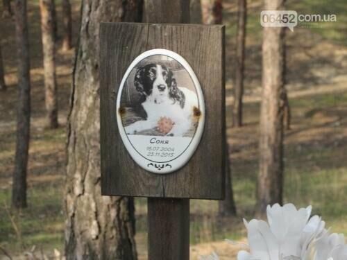 Собаке - собачьи похороны: как в Северодонецке хоронят домашних животных , фото-69