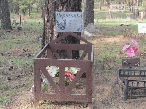Собаке - собачьи похороны: как в Северодонецке хоронят домашних животных , фото-72