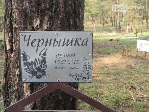 Собаке - собачьи похороны: как в Северодонецке хоронят домашних животных , фото-73