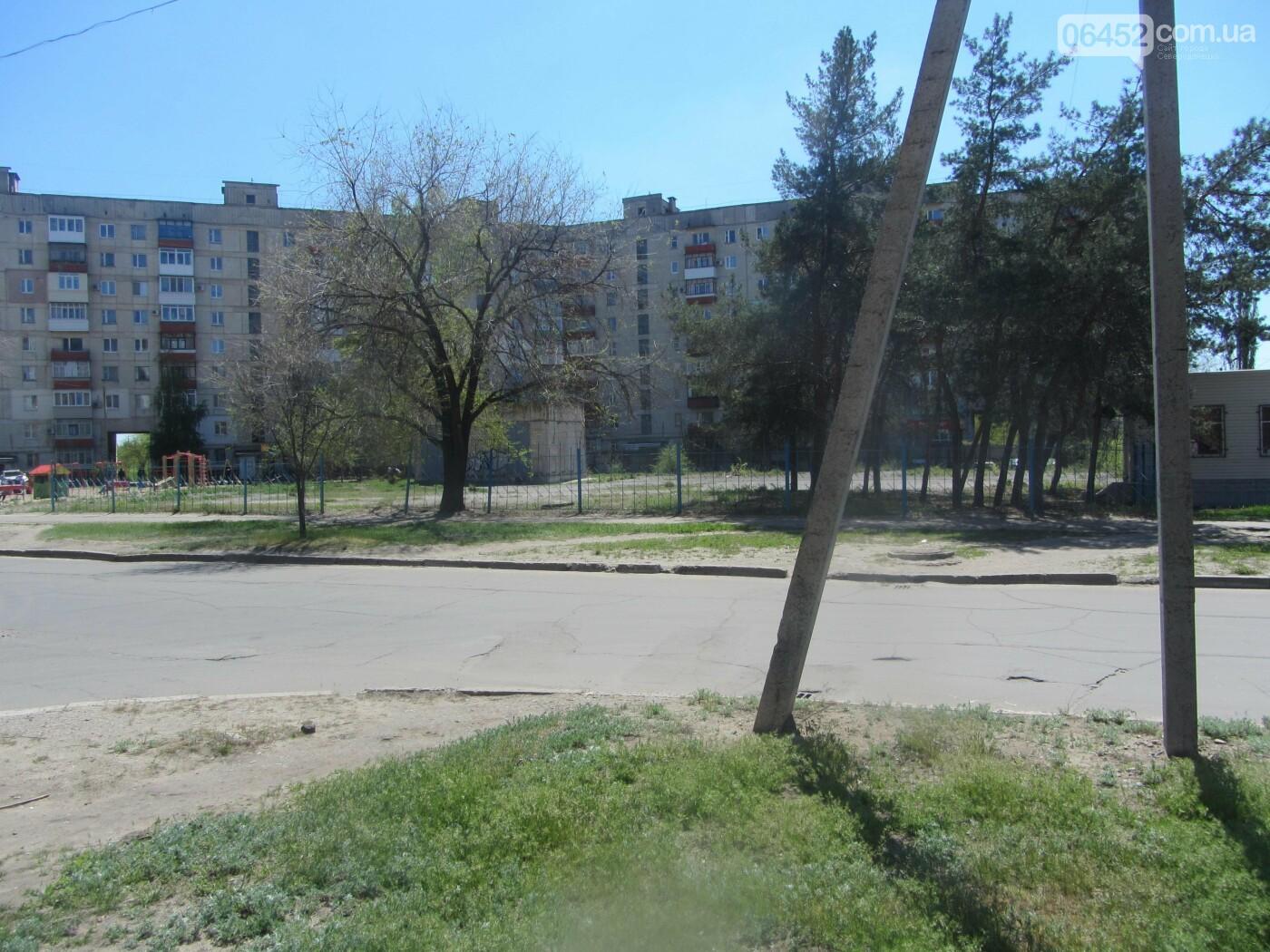Газон или парковка: житель Северодонецка требует создать парковочные места во дворах, фото-16