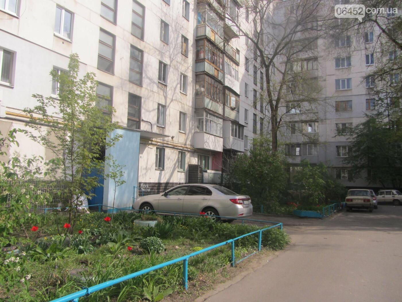 Дворы Северодонецка, в которых хочется жить, фото-32