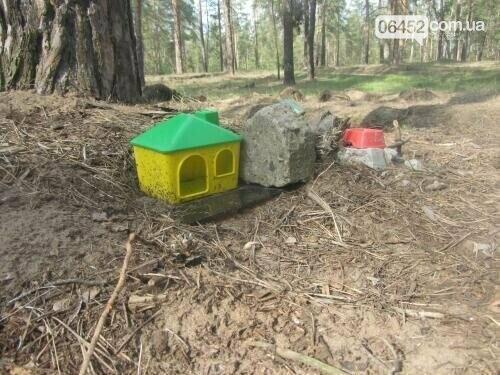 К Дню памяти домашних животных: где в Северодонецке хоронят любимцев , фото-1