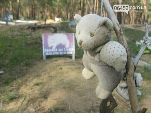 К Дню памяти домашних животных: где в Северодонецке хоронят любимцев , фото-4