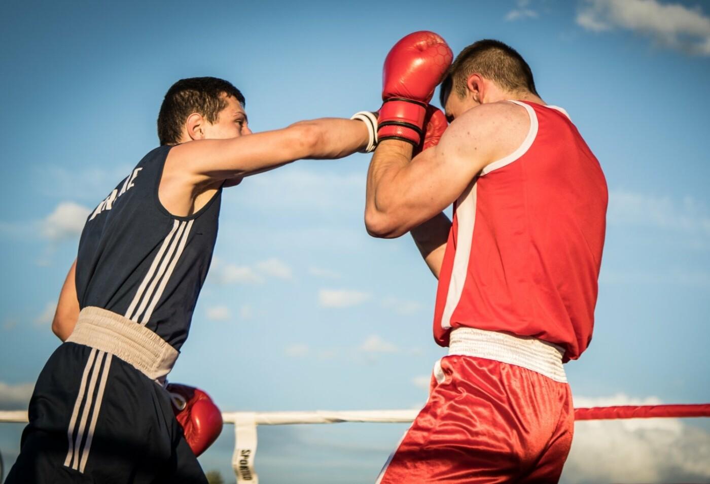 В Лисичанске прошел боксерский турнир памяти отца и сына Назаренко и концерт группы Армия, фото-3