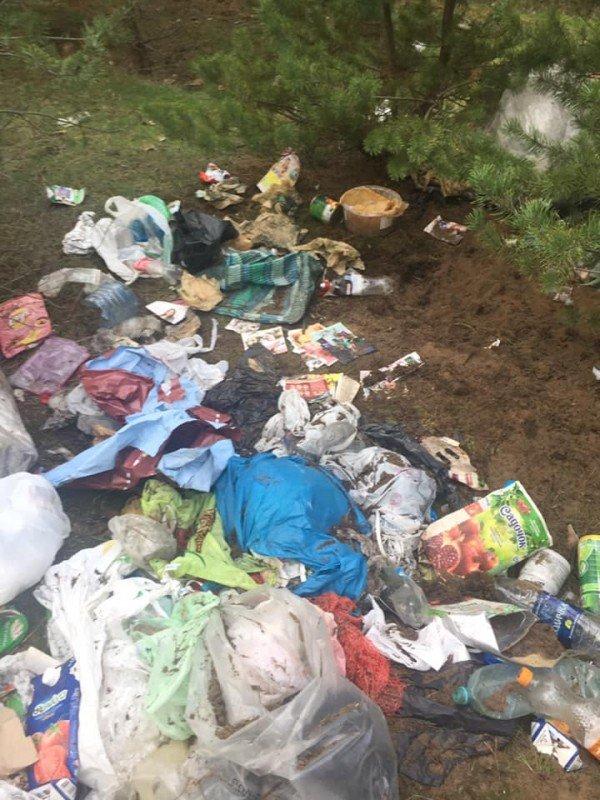 Соцсети: лес возле автовокзала нужно спасать от мусора, фото-1