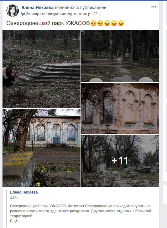 Что волнует жителей региона в период карантина? (обзор соцсетей), фото-38