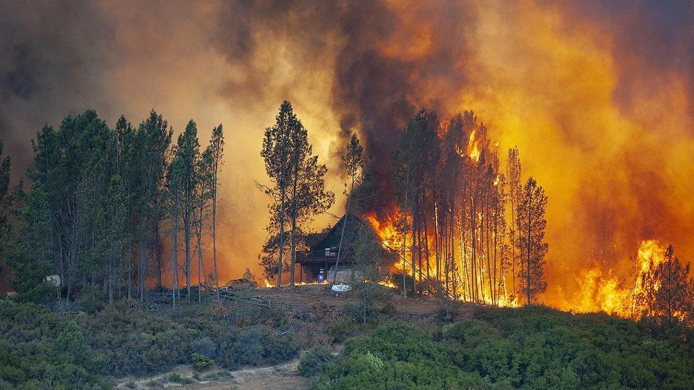 Правила поведения на Луганщине в пожароопасный период, фото-1