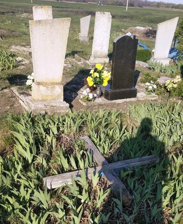 На Луганщине дети надругались над могилами (фото), фото-1