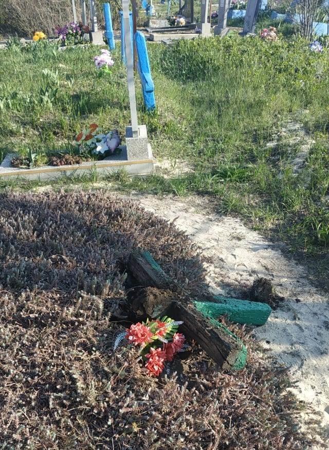 На Луганщине дети надругались над могилами (фото), фото-5