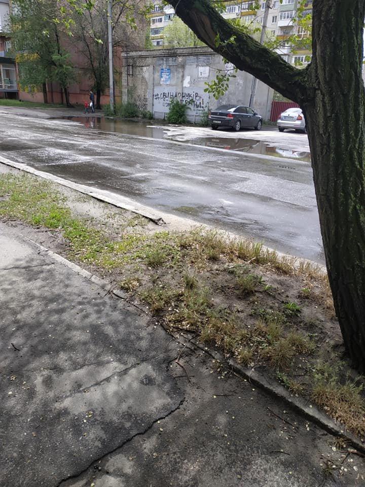 В Северодонецке тротуар превратился в полосу препятствий, фото-5