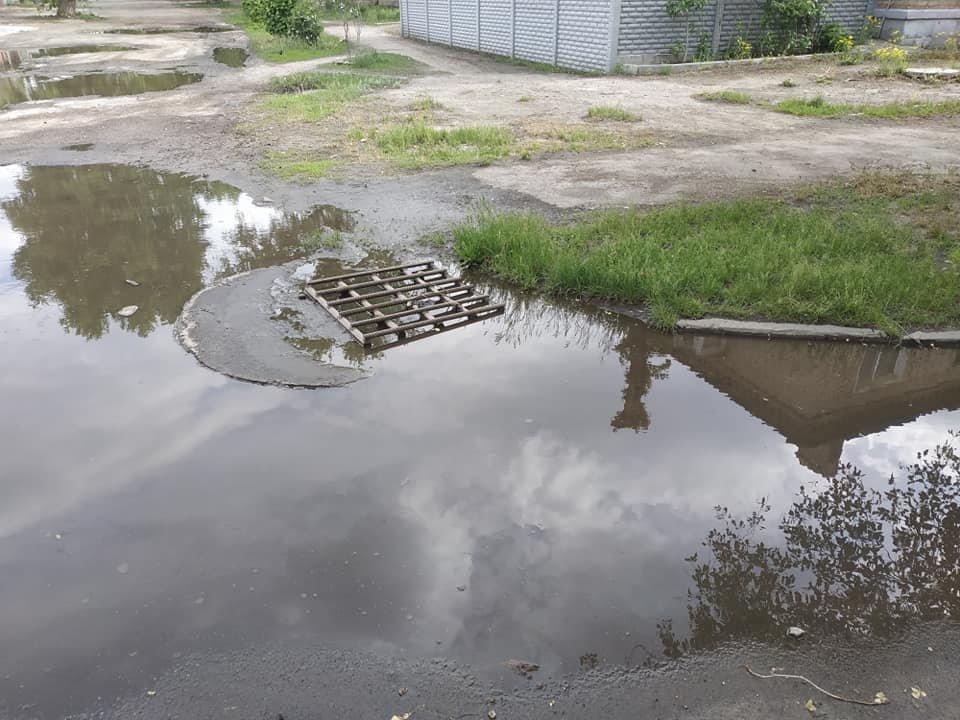В Северодонецке посреди города образовалось болото (фото), фото-3