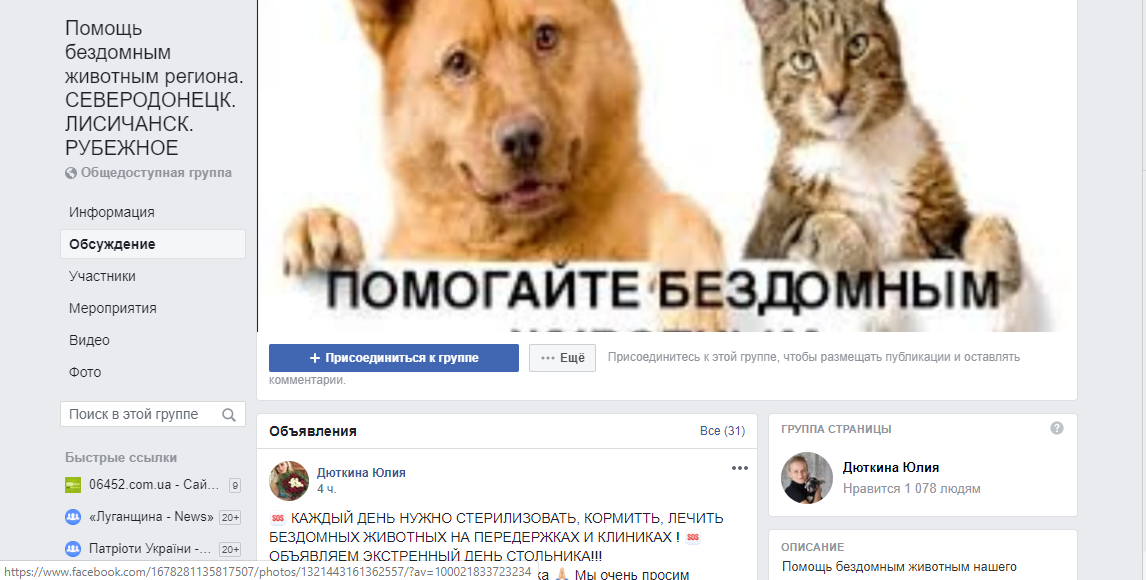 Как помочь бездомным животным в Северодонецке?, фото-3
